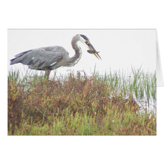 Heron Birds Wildlife Animals Wetlands Greeting Card