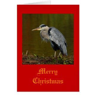Heron Christmas Cards