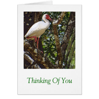 """""""HERON IN TREE"""" (DIGITAL MANIP. PHOTO) NOTE CARD"""