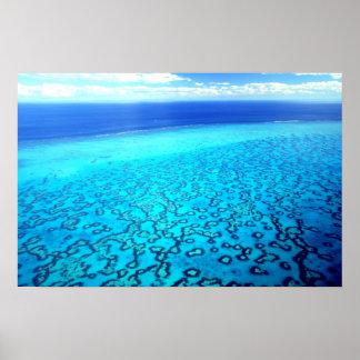 Heron Island Reef Print