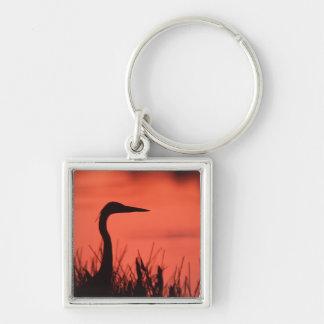 heron key chains