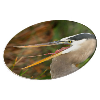 heron porcelain plates