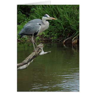 Heron on branch card