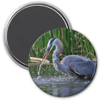 Heron Splash Magnet