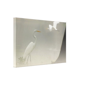 Herons in the Fog - Canvas Art Print