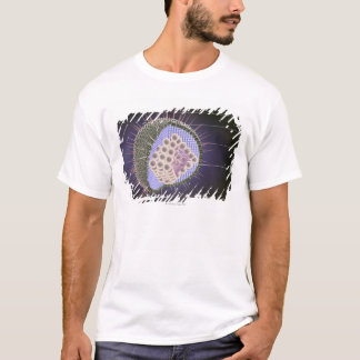 Herpes Virus Structure T-Shirt