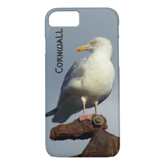 Herring Gull Charlestown Harbour Cornwall England iPhone 8/7 Case