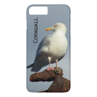 Herring Gull Charlestown Harbour Cornwall England iPhone 8 Plus/7 Plus Case
