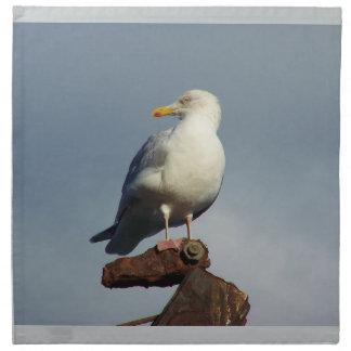 Herring Gull Charlestown Harbour Cornwall England Napkin