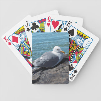 Herring Gull on Rock Jetty Bicycle Playing Cards