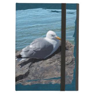 Herring Gull on Rock Jetty iPad Air Cases