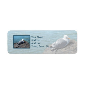 Herring Gull Resting on Rock Jetty: Return Address Label
