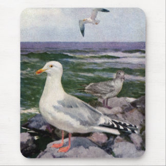 Herring Gulls on Rocky Shoreline Mouse Pad
