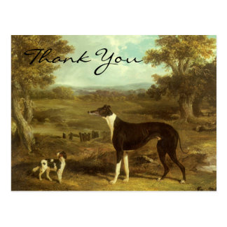 Herring s Greyhound and Spaniel Doctor Fop Post Card