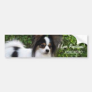 Hershey Kiss Hero Kennel Sticker features Giorgio Bumper Sticker