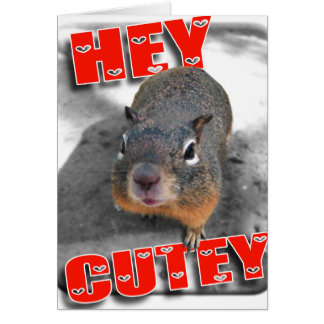 Hey cutey funny squirrel greeting cards
