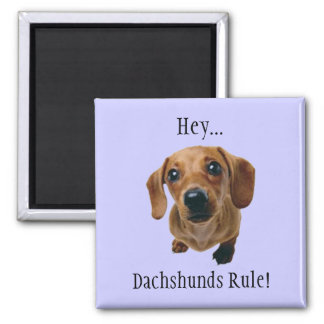"""Hey... Dachshunds Rule!"" Square Magnet"
