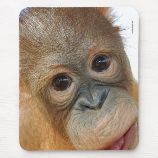 Hey, I'm a Cute Orangutan photo Mouse Mat