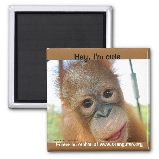Hey, I'm a Cute Primate Magnet