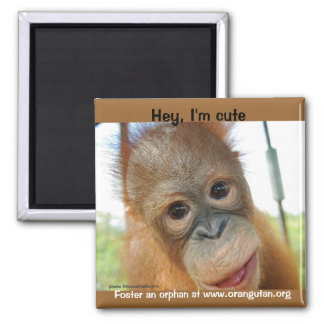 Hey, I'm a Cute Primate Square Magnet