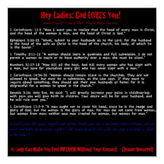 Hey Ladies God Loves You sarcastic Poster