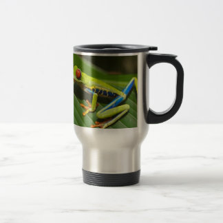 hey little green frog mug