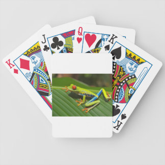 hey little green frog bicycle card deck