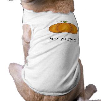 Hey Pumpkin Dog T-Shirt
