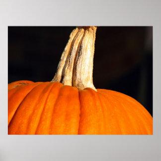 Hey Pumpkin Poster