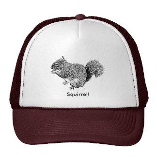 Hey Squirrel Cap