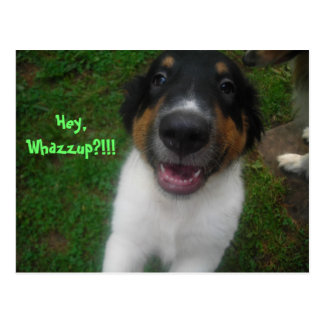 Hey, Whazzup?!!! Postcard
