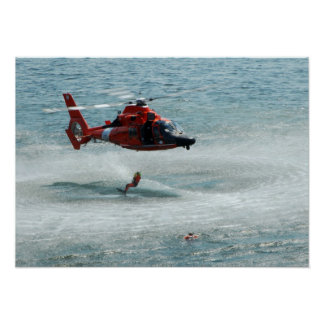 HH-65 Dolphin Poster