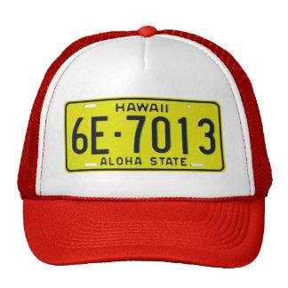 HI69 TRUCKER HAT