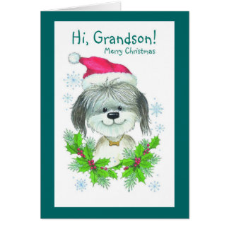 Hi, Grandson Merry Christmas Card
