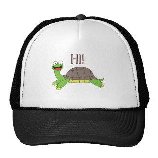 Hi! Trucker Hats