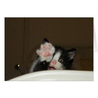 """Hi"" Kitten Note Card"