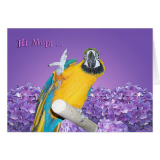 Hi Mom Card