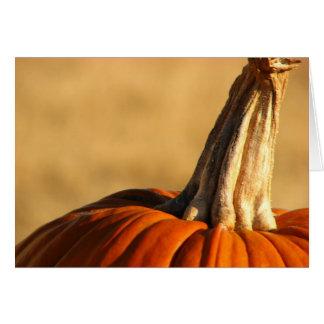 Hi Pumpkin Card