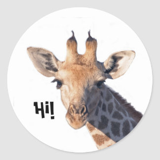 Hi!  sticker