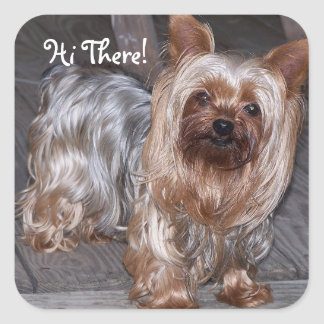 Hi There Yorkshire Terrier Square Sticker