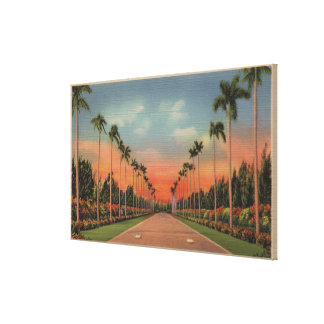 Hialeah, Florida - Miami Jockey Club Driveway Canvas Print
