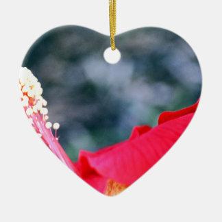 Hibiscus 4 christmas ornament