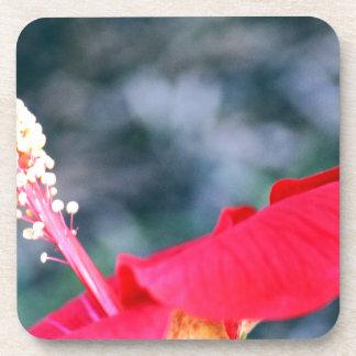 Hibiscus 4 drink coaster