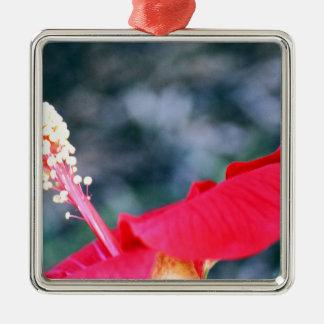 Hibiscus 4 square metal christmas ornament