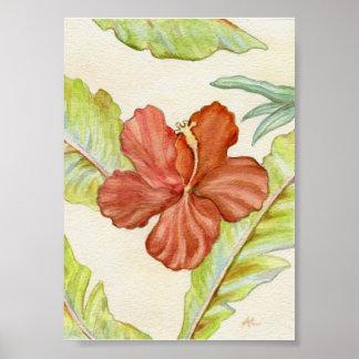 Hibiscus Art Print 5x7