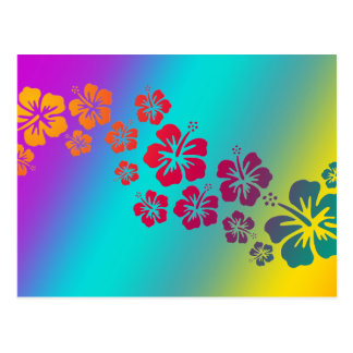hibiscus blooms | coloured background postcard