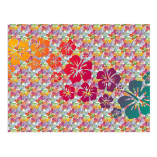 hibiscus blooms coloured | heart pattern postcard