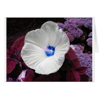 Hibiscus Blue Greeting Card