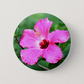 Hibiscus Button