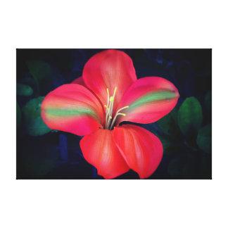Hibiscus Canvas